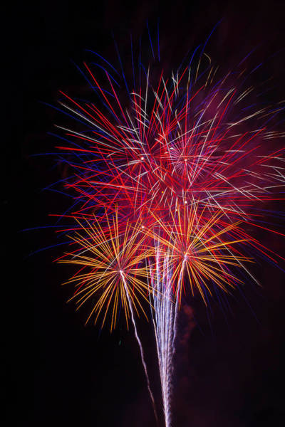 Dazzle Wall Art - Photograph - Blooming Fireworks by Garry Gay
