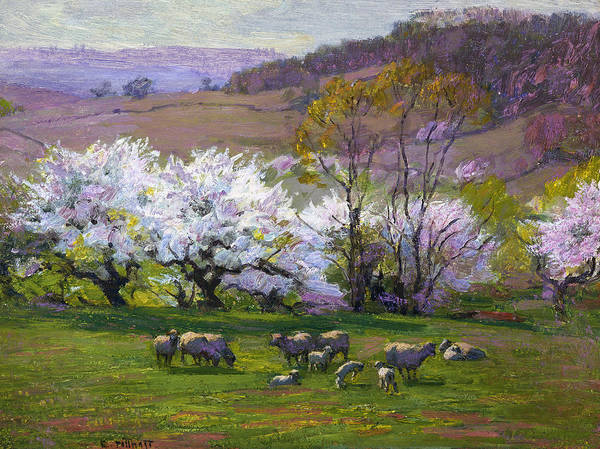 Wall Art - Painting - Blossom Time by Edward Henry Potthast