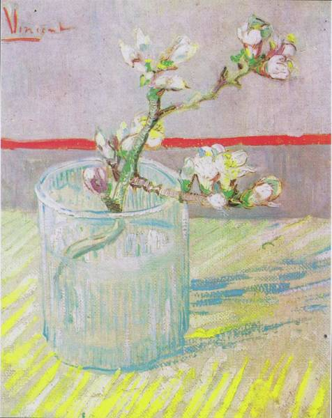 Painting - Blossoming Almond Branch In A Glass 1888 by Vincent Van Gogh