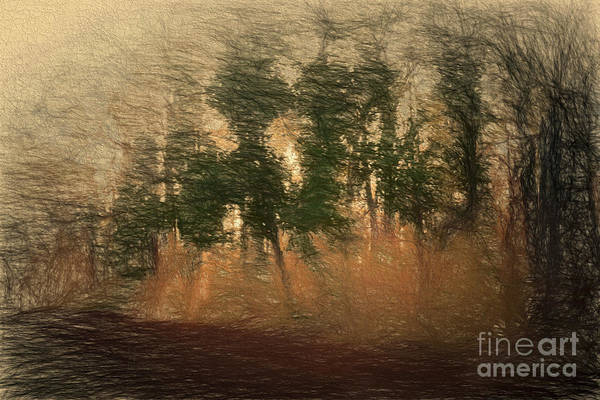 Digital Art - Blowin' In The Wind by Elaine Teague