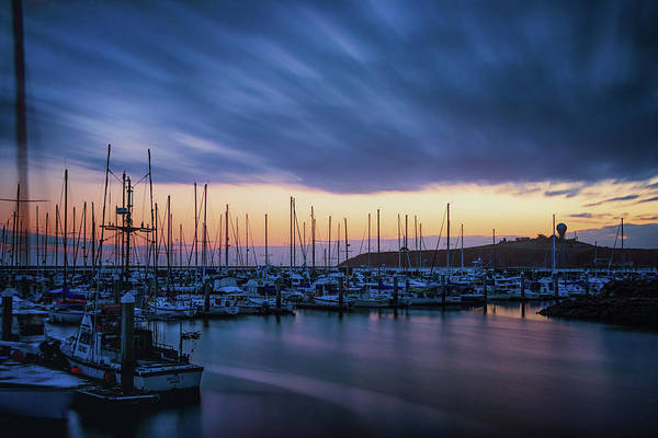Half Moon Bay Photograph - Blowing Over by Marnie Patchett