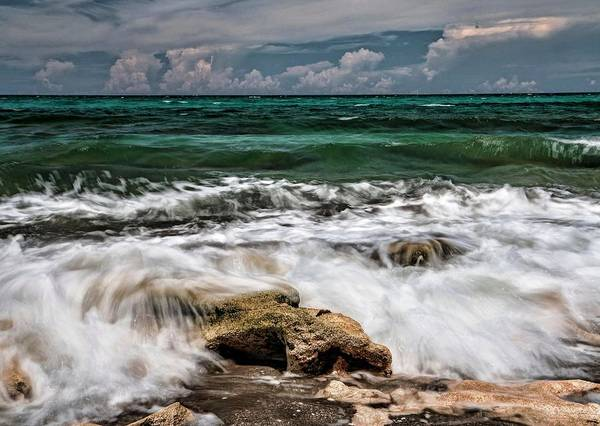 Photograph - Blowing Rocks Preserve  by Carol Montoya