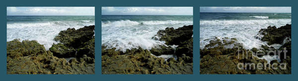 Photograph - Blowing Rocks Preserve Triptych by D Hackett