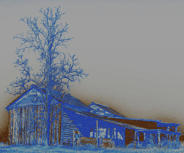Wall Art - Photograph - Blue And Brown by David A Brown