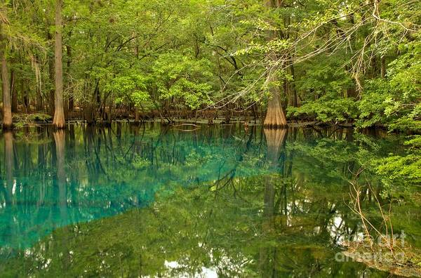 Photograph - Blue And Green Waters At Manatee by Adam Jewell