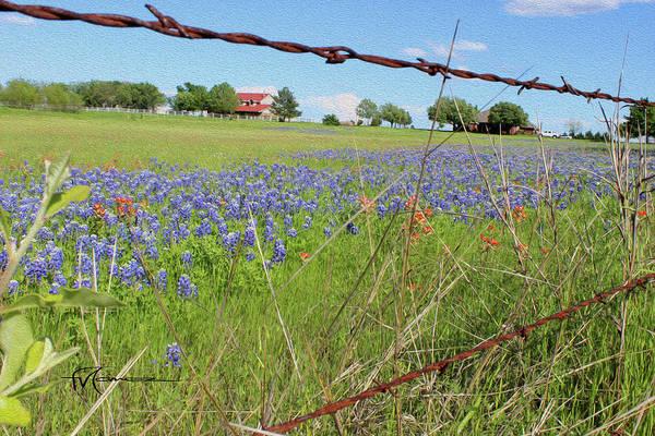 Wall Art - Photograph - Blue And Orange Field by Felipe Gomez
