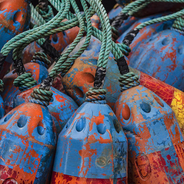 Float Wall Art - Photograph - Blue And Orange Fishing Buoys by Carol Leigh