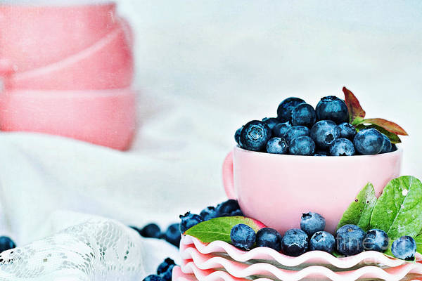 Bilberry Photograph - Blue And Pink by Stephanie Frey