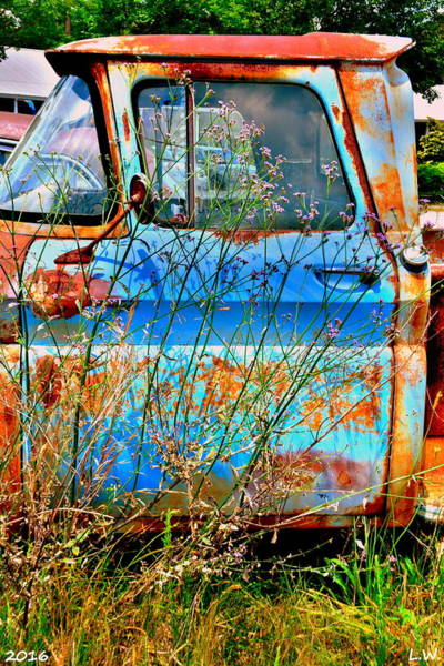 Photograph - Blue And Rust by Lisa Wooten