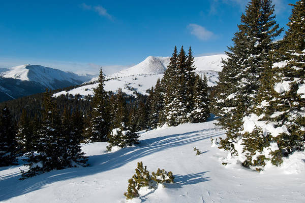 Photograph - Blue And White Colorado Winter Beauty by Cascade Colors