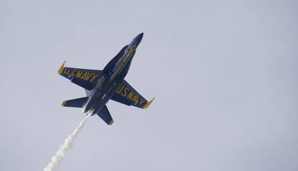 Photograph - Blue Angel by Chris Alberding