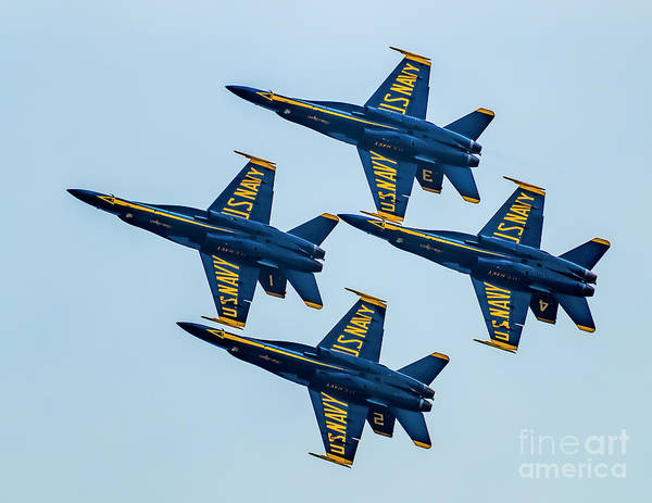 Photograph - Blue Angels Delta Formation by Nick Zelinsky