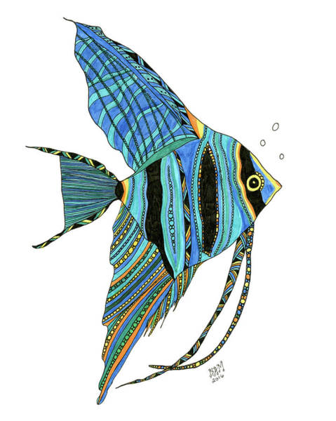 Drawing - Blue Anglefish by Barbara McConoughey