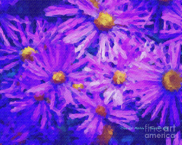 Painting - Blue Asters - Watercolor by Charles Muhle