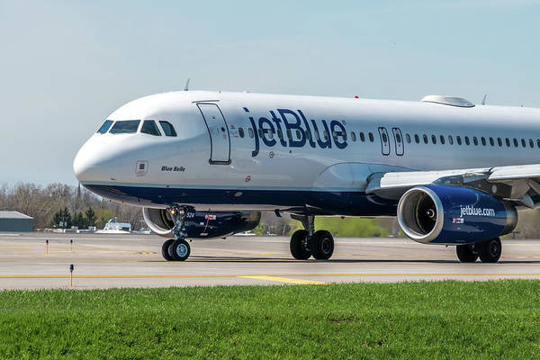 Jetblue Wall Art - Photograph - Blue Belle by Guy Whiteley