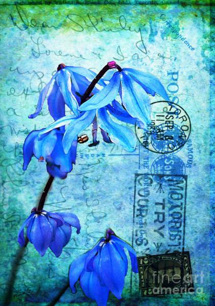 Cursive Photograph - Blue Bells On Vintage 1936 Postcard by Nina Silver