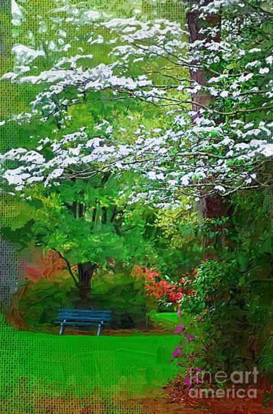 Photograph - Blue Bench In Park by Donna Bentley