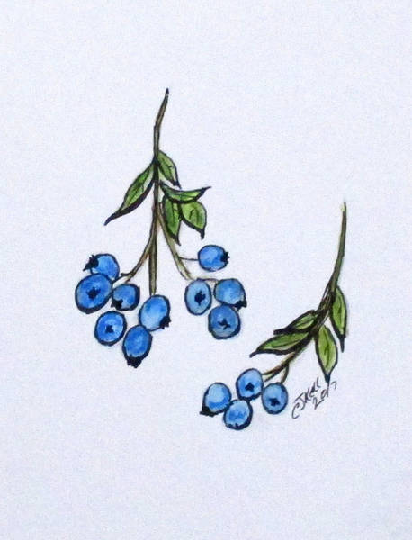 Painting - Blue Berries by Clyde J Kell