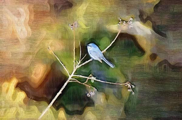 Photograph - Blue Bird by Donna Bentley