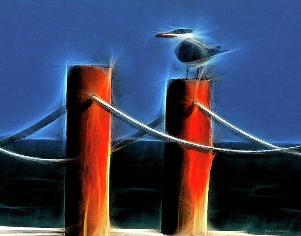 Photograph - Blue Bird With Two Red Posts by Coleman Mattingly