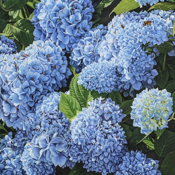 Blue Blush- Art Print