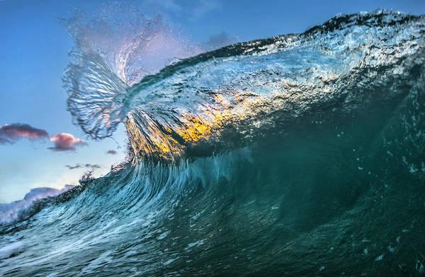 Water Bottle Wall Art - Photograph - Blue Bottle by Sean Davey