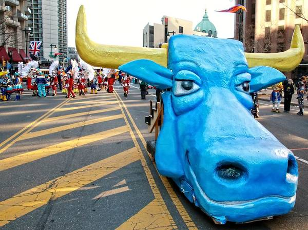 Photograph - Blue Bull by Alice Gipson