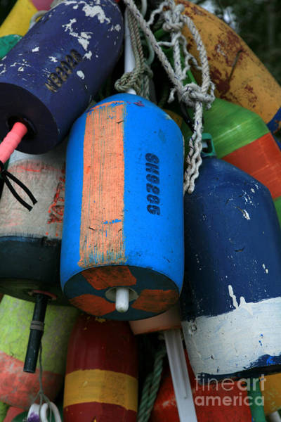 Wall Art - Photograph - Blue Buoys by Timothy Johnson
