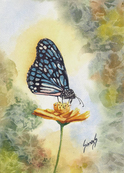 Painting - Blue Butterfly by Sam Sidders