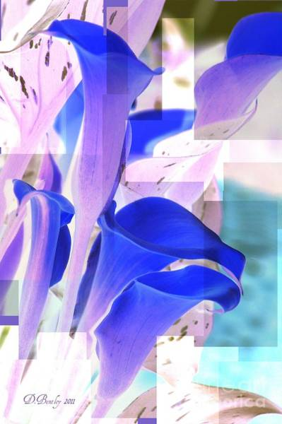 Photograph - Blue Calla Lily2 by Donna Bentley