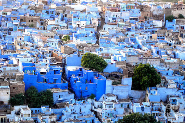 Jodhpur Wall Art - Photograph - Blue City by Delphimages Photo Creations