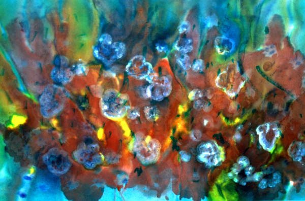 Emanate Painting - Blue Columbine by Don  Wright