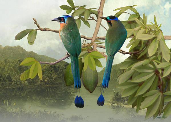 Wall Art - Digital Art - Blue-crowned Motmots In Kapok Tree by M Spadecaller