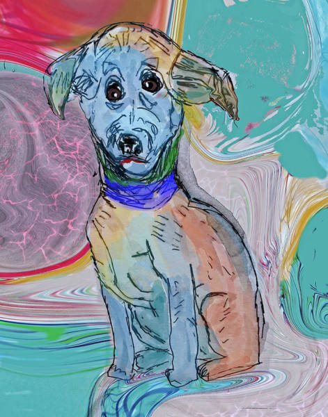 Wall Art - Digital Art - Blue Dog Looks For New Home by Susan Stone