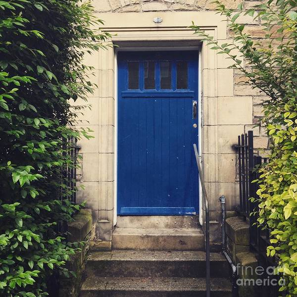 Photograph - Blue Door In Ivy by Suzanne Lorenz
