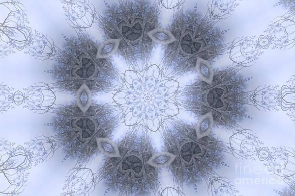 Digital Art - Blue Dream by Elaine Teague