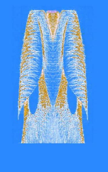 Digital Art - Blue Dress by Mary Russell