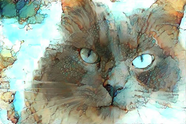 Digital Art - Blue Eyed Persian Cat Watercolor by Peggy Collins