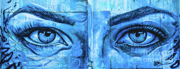 Wall Art - Photograph - Blue Eyes by Colleen Kammerer