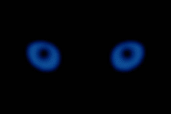 Blue Eye Digital Art - Blue Eyes by Pelo Blanco Photo