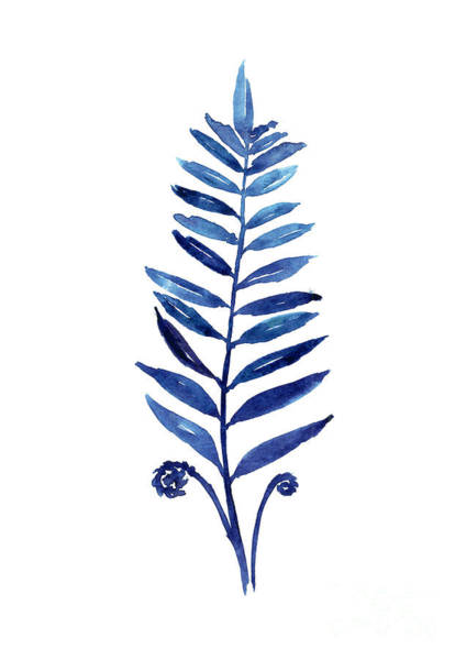 Blue Fern Watercolor Poster Art Print