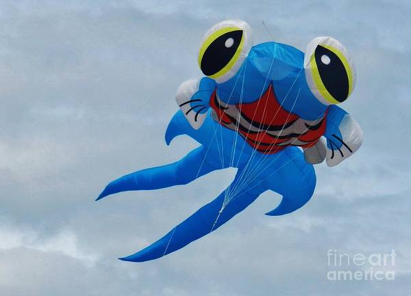 Flying A Kite Photograph - Blue Fish Kite by Snapshot Studio