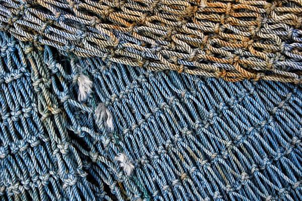Wall Art - Photograph - Blue Fishing Net Detail by Carol Leigh