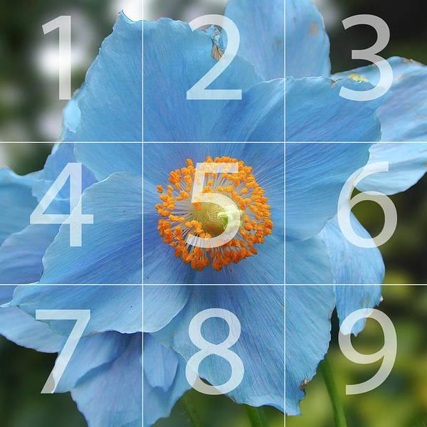 Photograph - Blue Flower, Butchart Gardens, Victoria Bc Canada Map by Michael Bessler