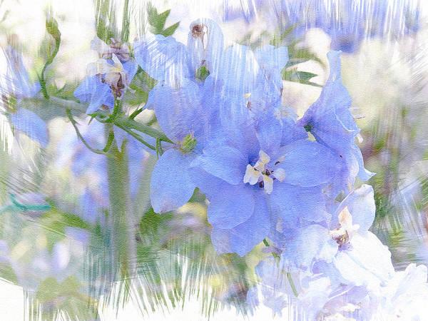 Photograph - Blue Flower Fantasy by Michele A Loftus