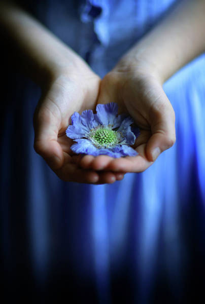 Photograph - Blue Flower In Little Girl's Hands by Maggie McCall