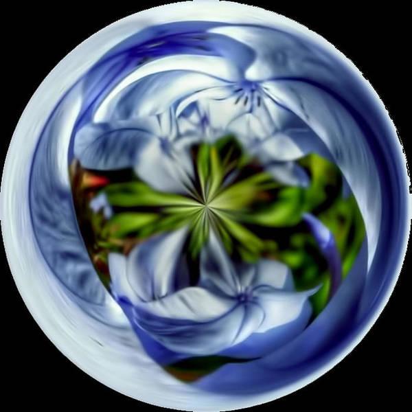 Mixed Media - Blue Flower In Sphere by Pamela Walton