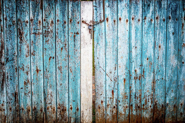 Photograph - Blue Gate by Susie Weaver