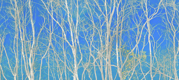 Clarity Digital Art - Blue Haze by Aaron Geraud