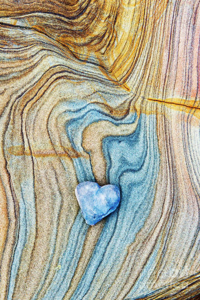 Photograph - Blue Heart Stone by Tim Gainey